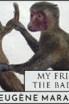 My Friends the Baboons